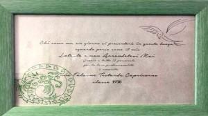 Draghetto verde