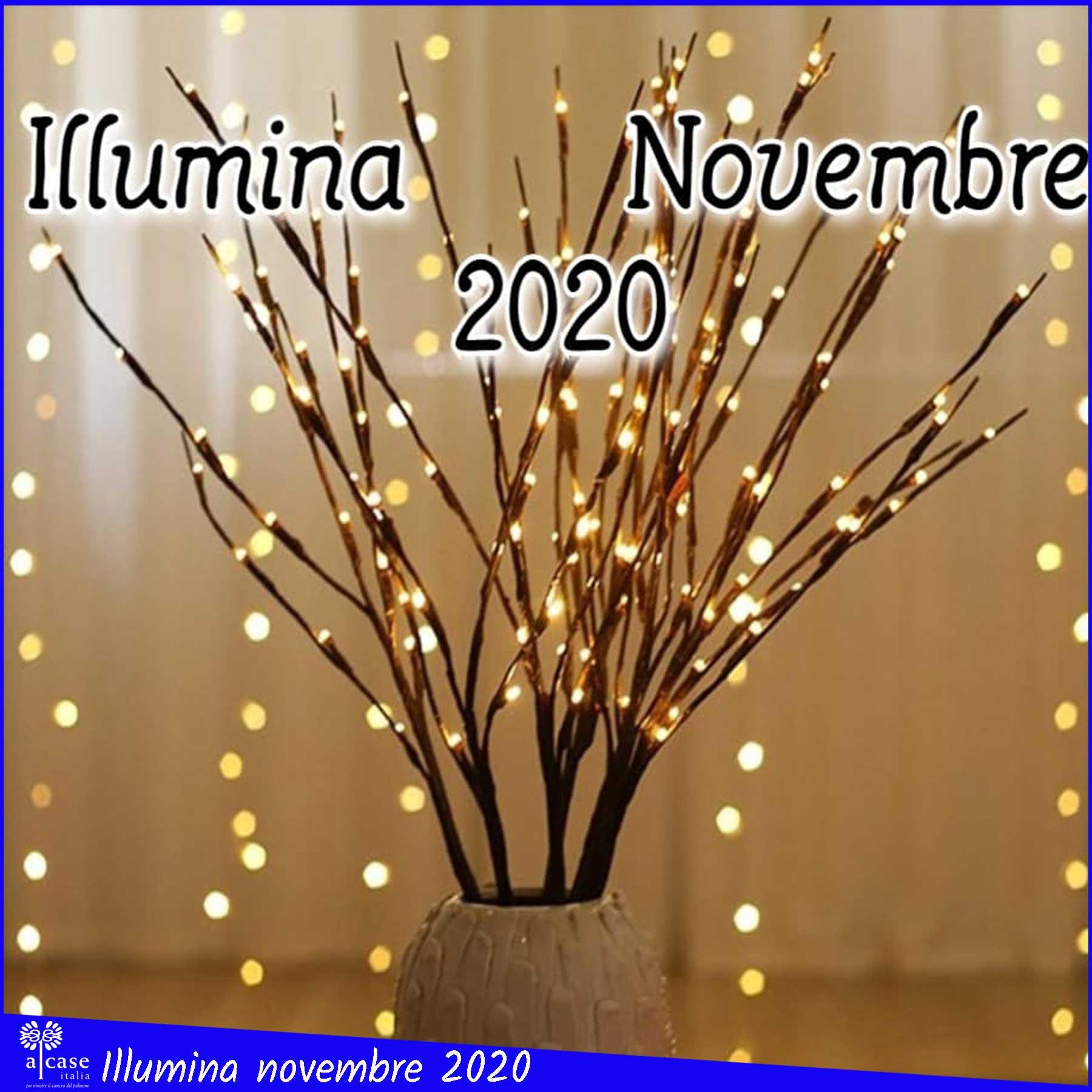 illumina novembre